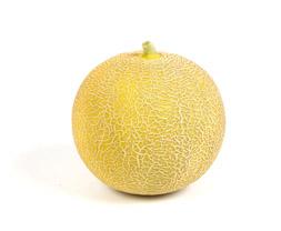 Melon-Galia_Hel_253x208