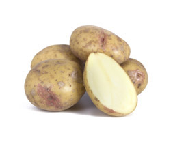 Potatis-KingEdward_gruppa_253x208